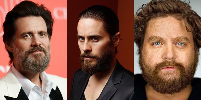 Голливудская бородка
